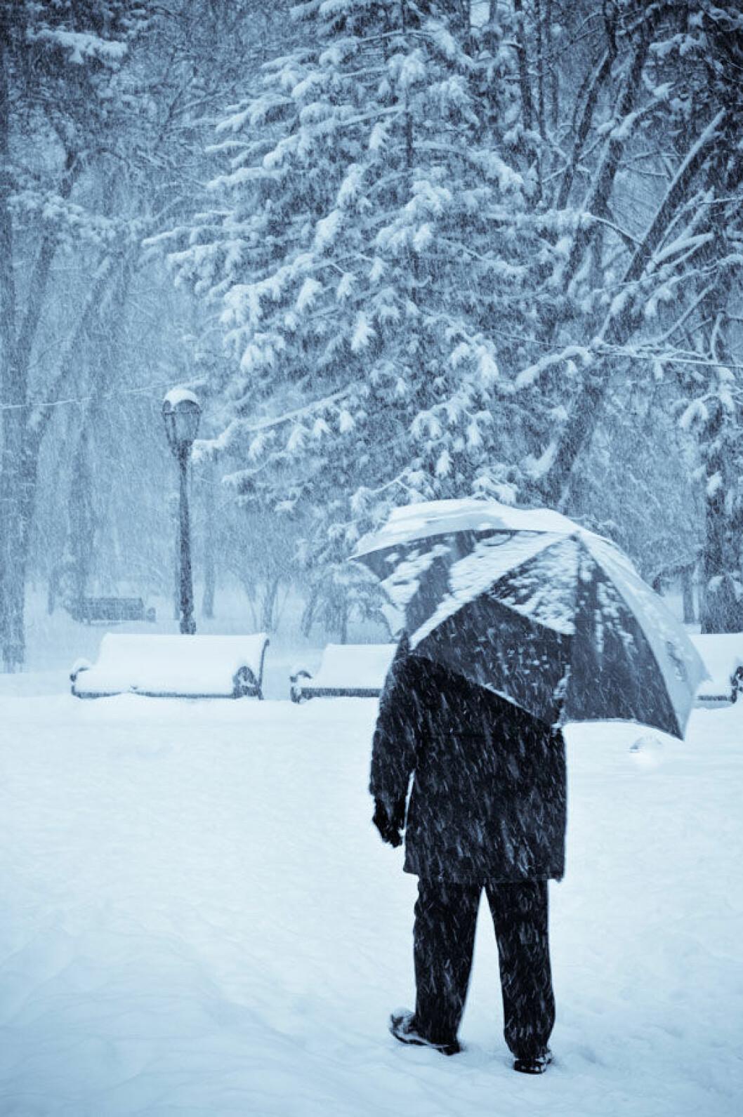 1-desember-Vinter
