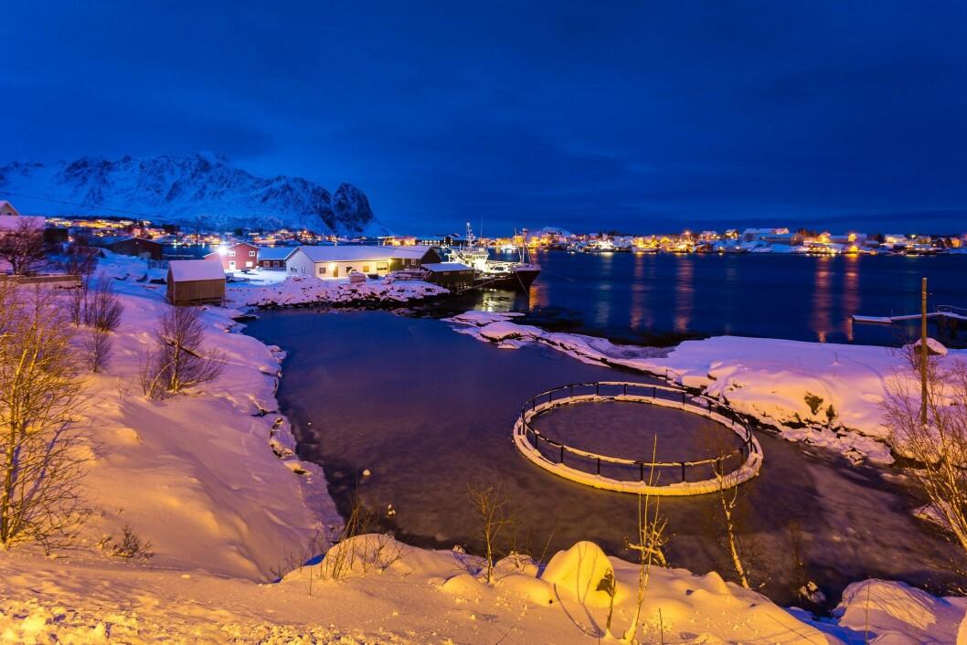Foto: Innovasjon Norge/Istock
