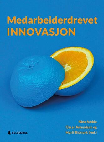 Innovasjon og ganske mye mer